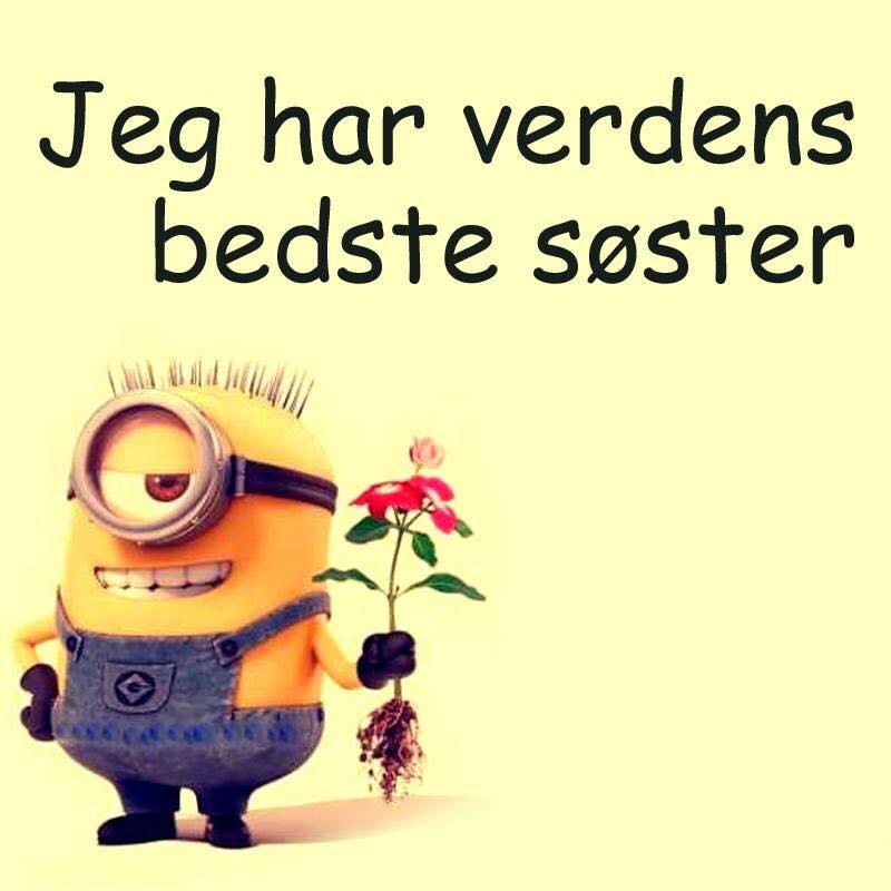 verdens bedste kærligheds citat Verdens bedste søster   DAGENSDELER.DK verdens bedste kærligheds citat