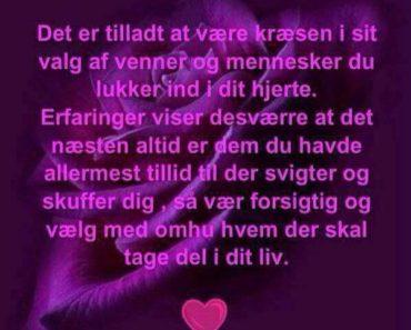 Citater om livet - DAGENSDELER.DK