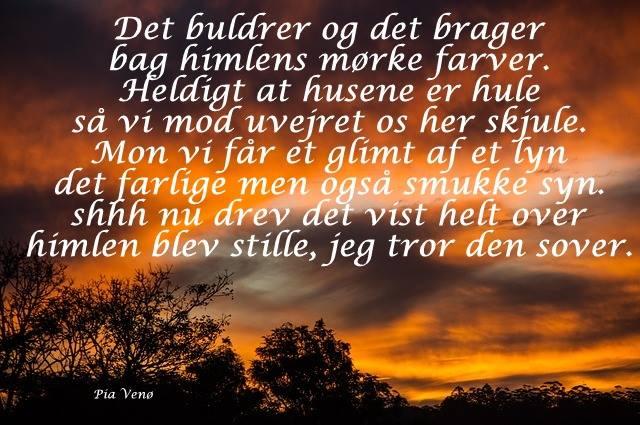 citater om savn Citater ved Pia Venø   DAGENSDELER.DK citater om savn